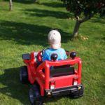 Diferencias entre un coche eléctrico para niños de 12V y 6V